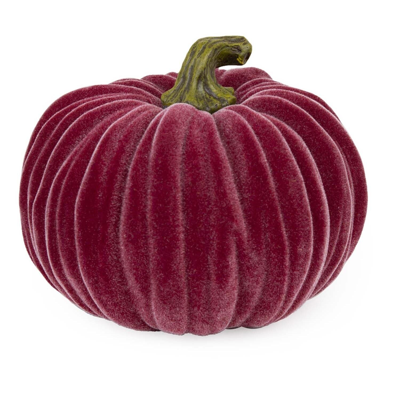 Velvet Pumpkin - Med