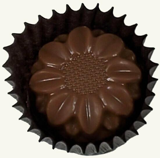 Bordeaux Chocolate