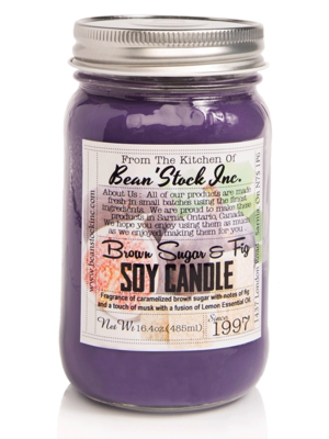 Bean'Stock Soy Candle | Rhubarb & Fig