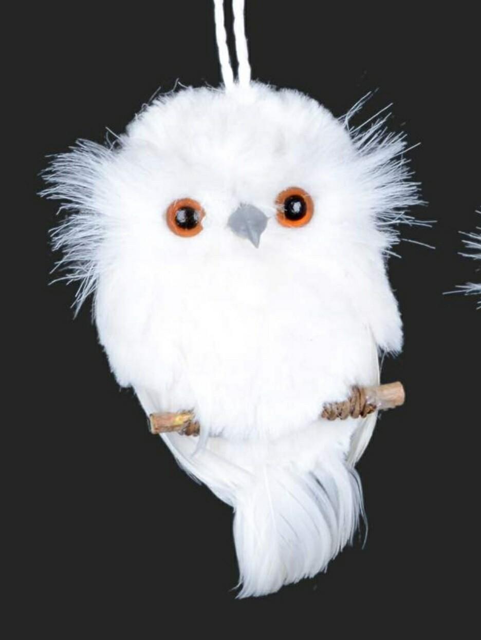 White Owl on Twig | Forward Facing