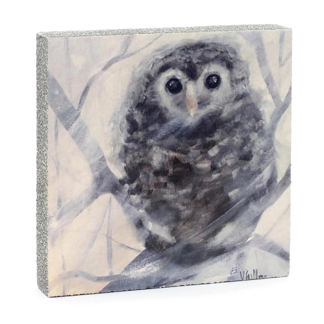 Cedar Mountain Little Gem Art Block - Fledgling Owl