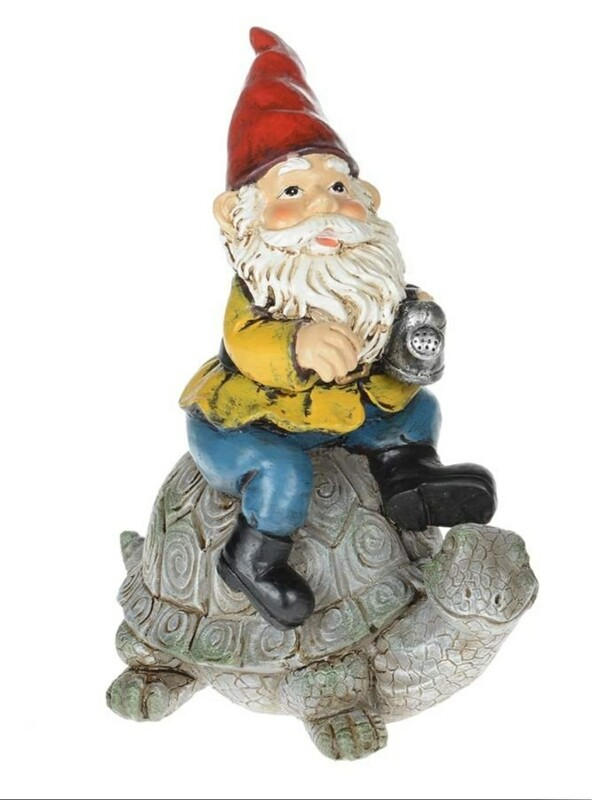 Gnome on Turtle