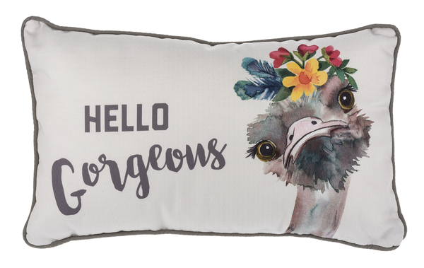 Small Ostrich Cushion - Hello Gorgeous