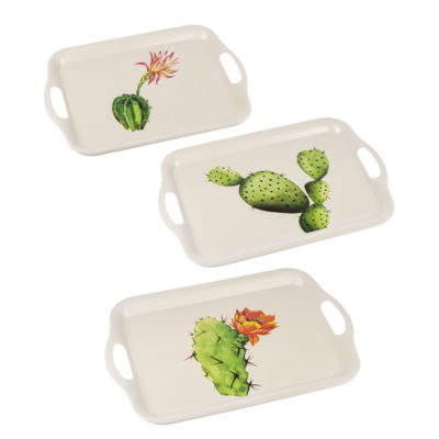 Bamboo Trays - Succulent