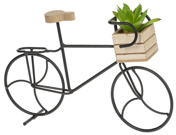 Bicycle Decor - with succulent