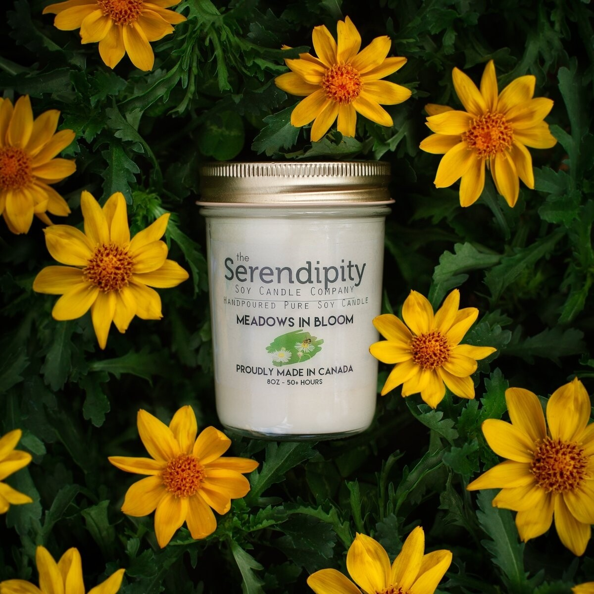 Serendipity 8 oz Soy Candle Jar | Meadows in Bloom
