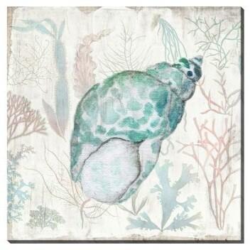 Canvas - Seaside Seashell
