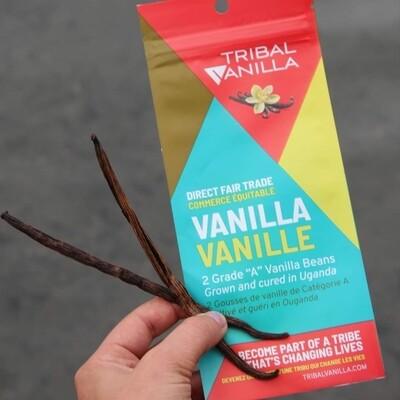 Tribal Vanilla   Grade A Fair Trade Vanilla Beans - 2 Pods Per Package