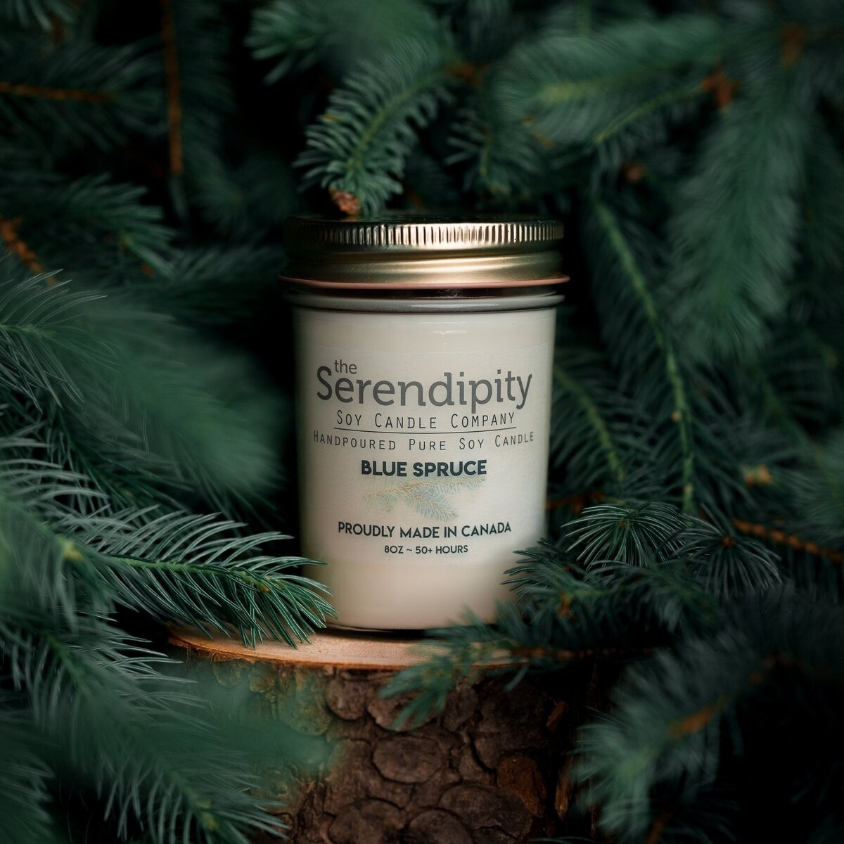 Serendipity 8 oz Soy Candle Jar   Blue Spruce