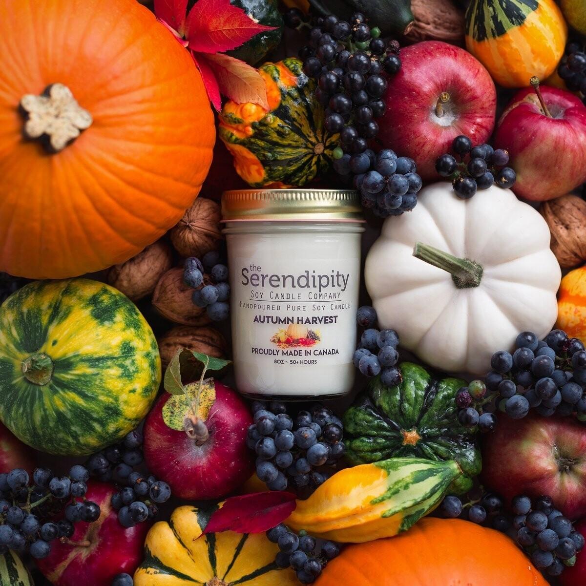 Serendipity 8 oz Soy Candle Jar | Autumn Harvest