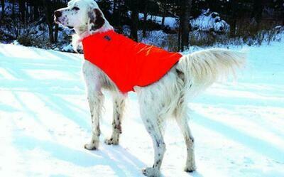 Fleece Dog Jacket