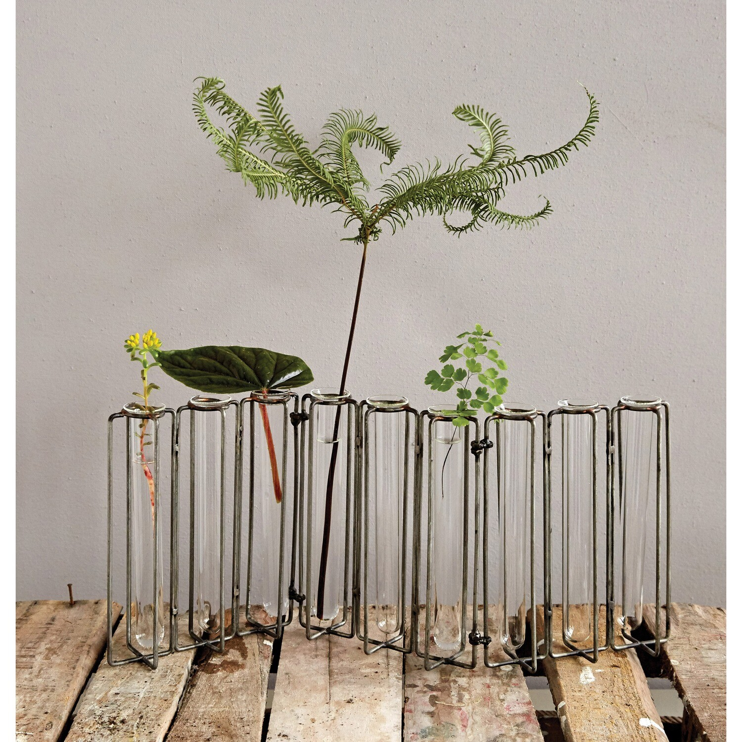 Test Tube Propagation Vase With Black Stand