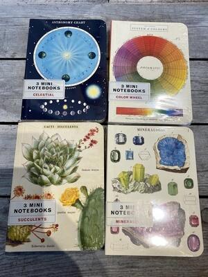 Cavallini Set 3 Mini Notebook