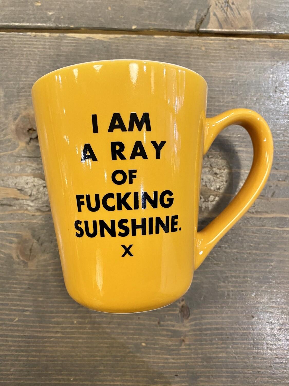 Ray Of Fucking Sunshine Mug