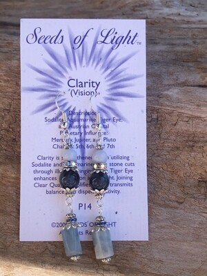 Clarity Aquamarine Dangle Earrings
