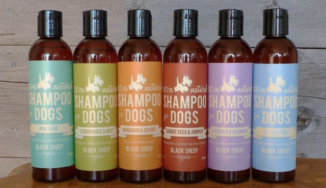 Black Sheep Organic Shampoos