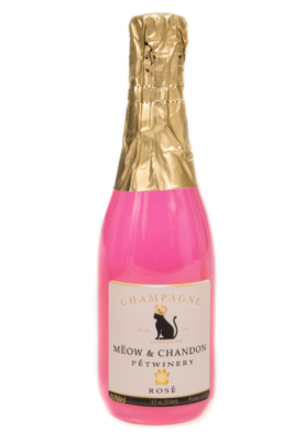 Cat Champagne Meow & Chandon
