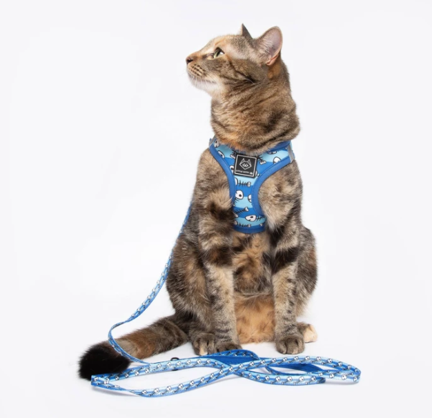 Cat Harness