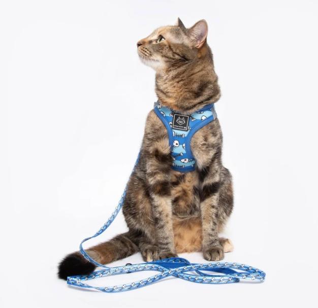 Cat Leash