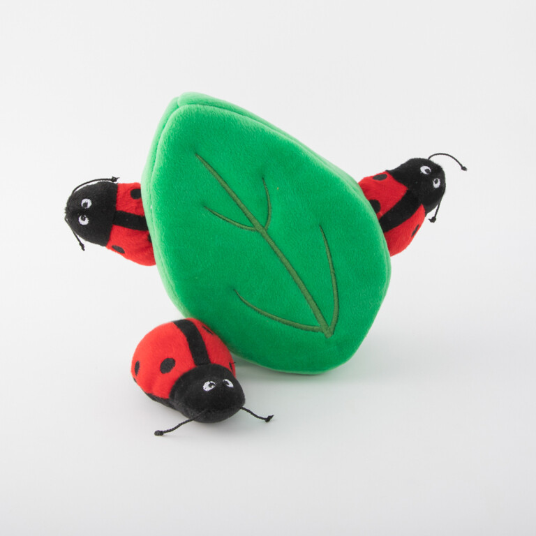 Ladybugs in Leaf - Hide & Seek