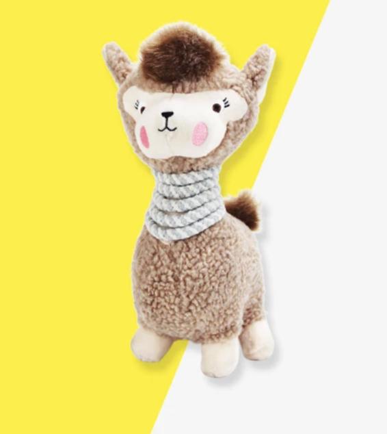 Lola the Llama