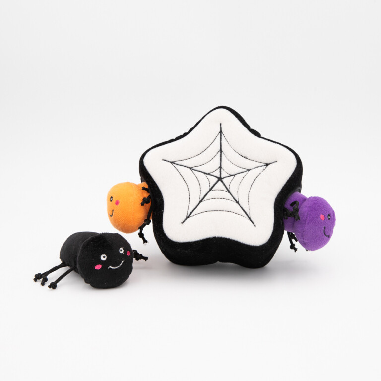 Spider Web - Hide & Seek Toy