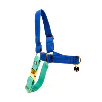 Blue Seafoam No-Pull Harness - EPW