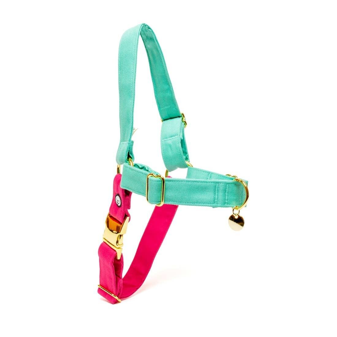 Pink Seafoam No-Pull Harness - EPW