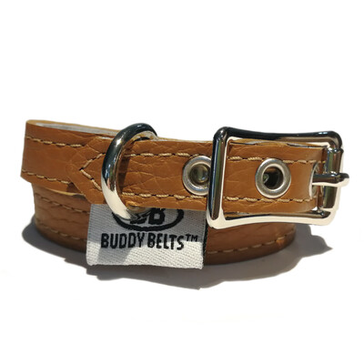 Caramel Collar - Buddy Belt