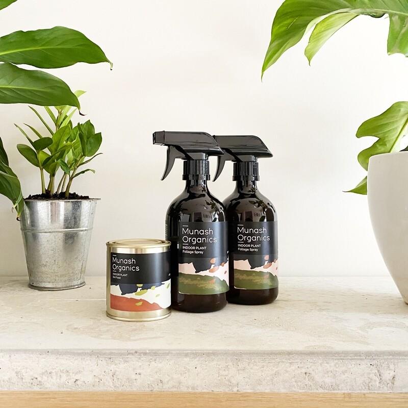 Indoor Plant Care  Bundle 2