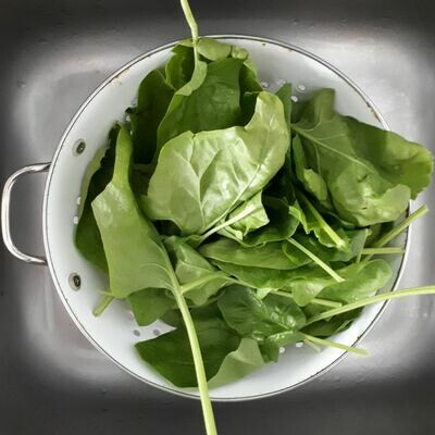 Local Millhouse Farm Organic Spinach Leaves - Large Bag Unwashed