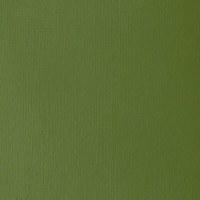HEAVY BODY 2OZ CHROMIUM OXIDE GREEN