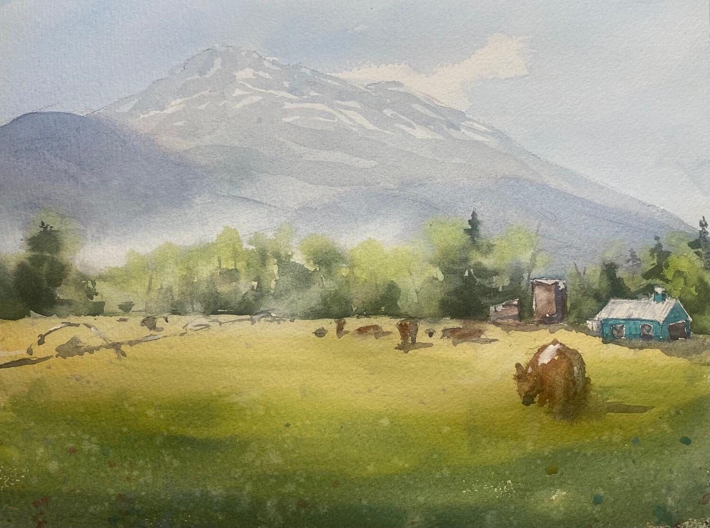 Field Sketching: August 31st
