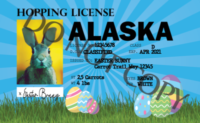 Easter Bunny License - Add your city and Spotify Codes to the Back