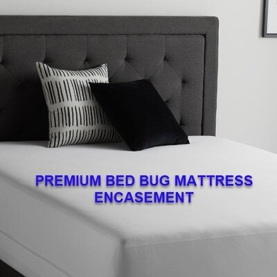 Bed Bug Encasement Mattress Protector
