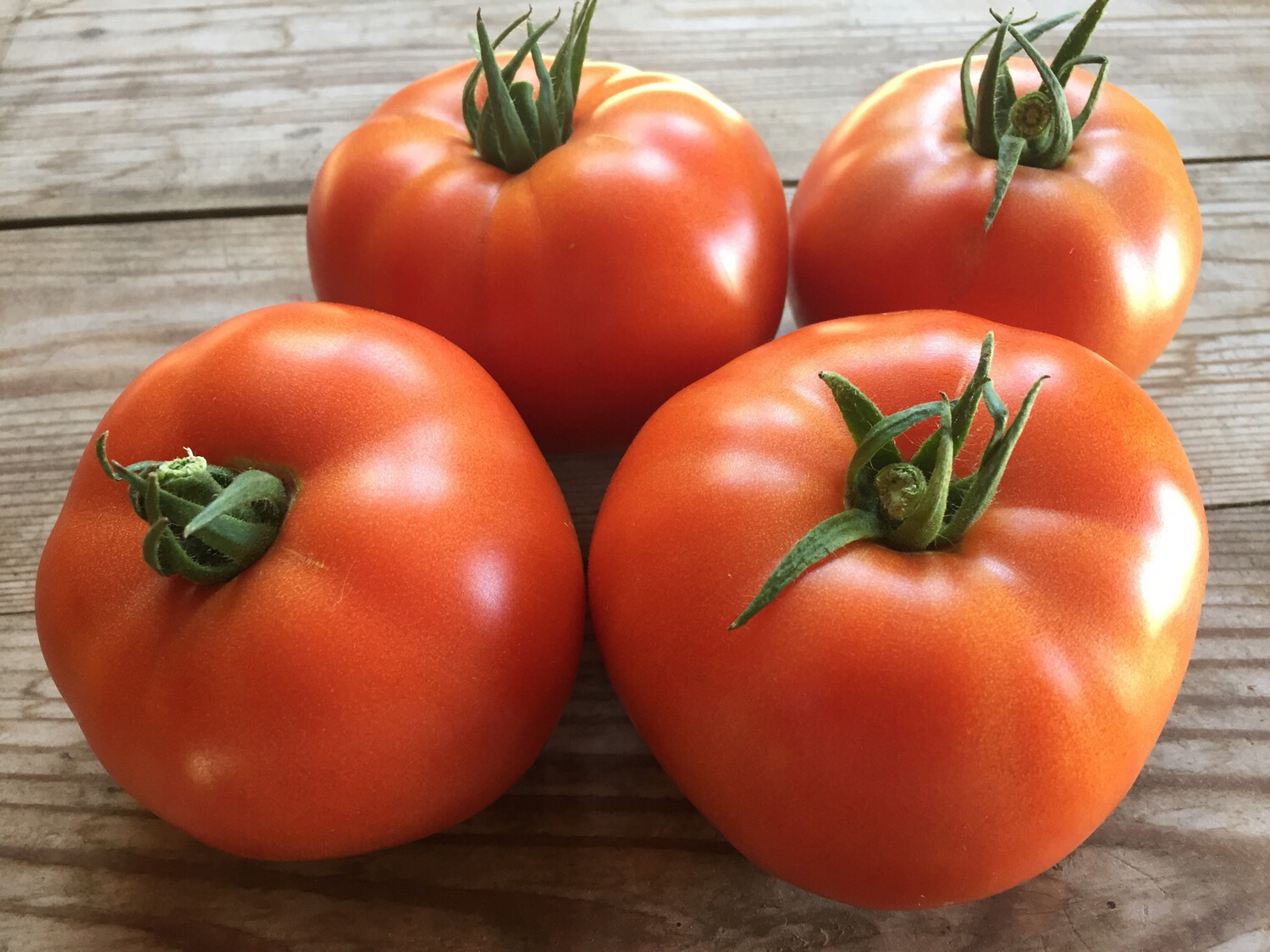 Tomates beef rouge 2lbs