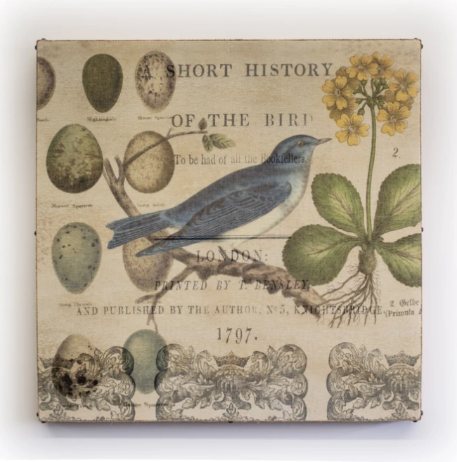 Bird collage right facing 29x29
