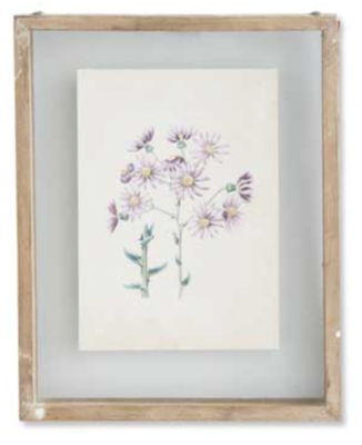 10 inch botanical print in shadow box C