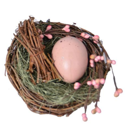Bird nest with egg