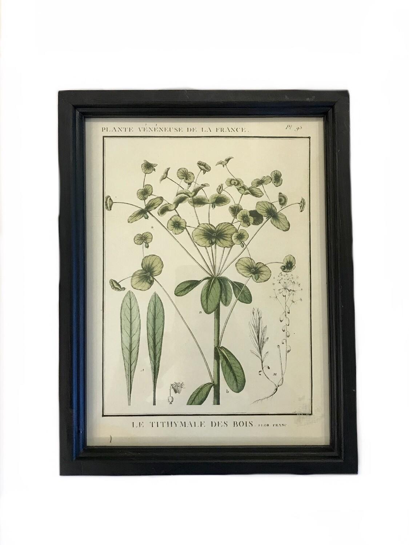 Leafy botanical print A