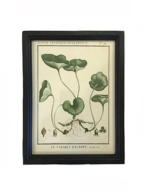 Leafy botanical print C