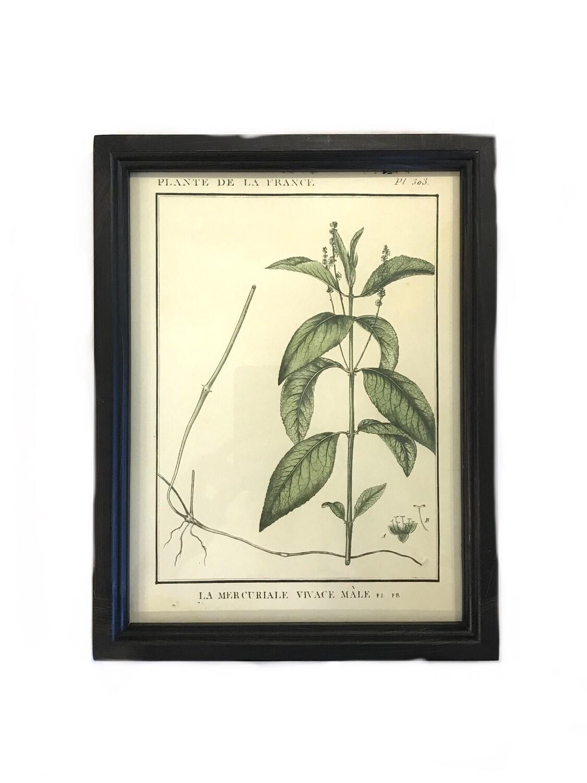 Leafy botanical print E