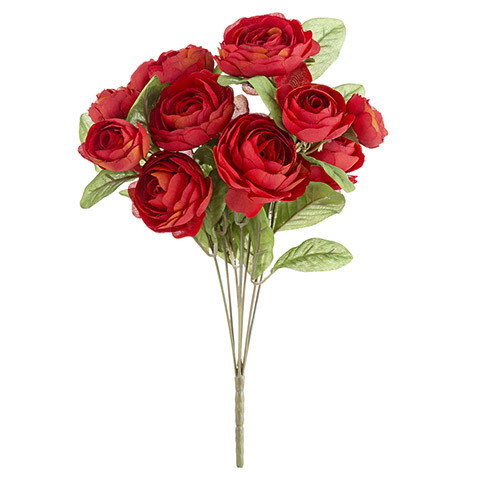 Ranunculus bush red