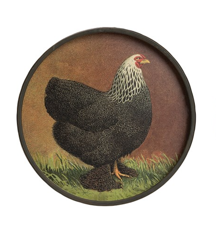 Round metal chicken wall decor black 11 inch