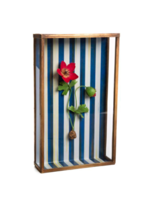 Anemone shadow box