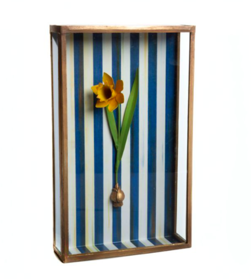 Daffodil shadow box