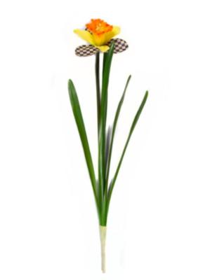 CC daffodil