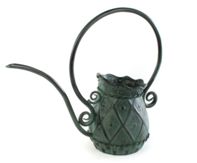 Fiddlehead Watering Can Small