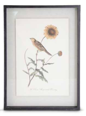 Black wood framed orange bird with sunflower print