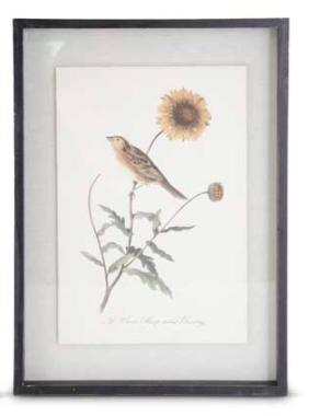 Black wood framed orange bird with sunflower print